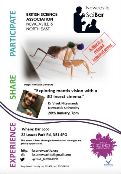 3D mantise poster